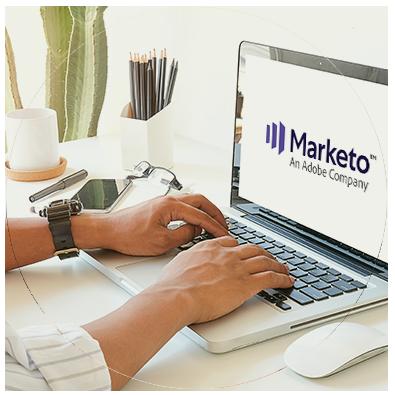 Marketo management